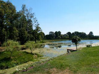 Maleszowa park p8192088