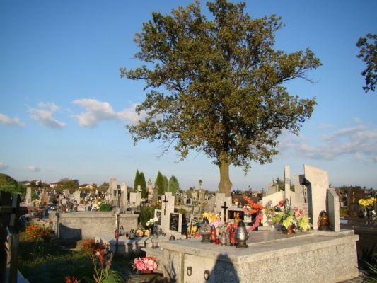 Cmentarz w Obrazowie