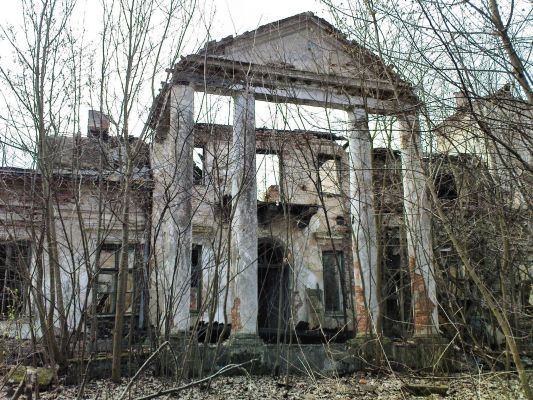 Ruiny Dworu w Bartodziejach - 01