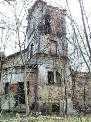 Ruiny Dworu w Bartodziejach - 02