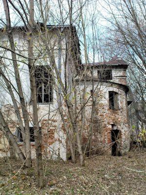 Ruiny Dworu w Bartodziejach - 05