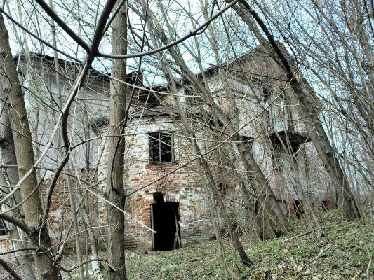 Ruiny Dworu w Bartodziejach - 06