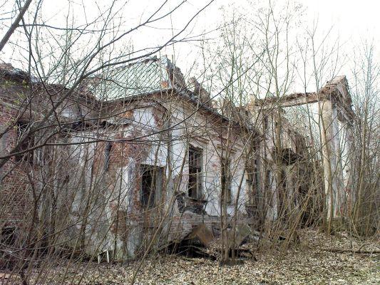 Ruiny Dworu w Bartodziejach - 07