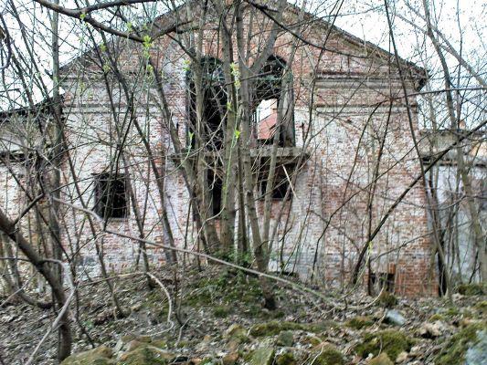 Ruiny Dworu w Bartodziejach - 10