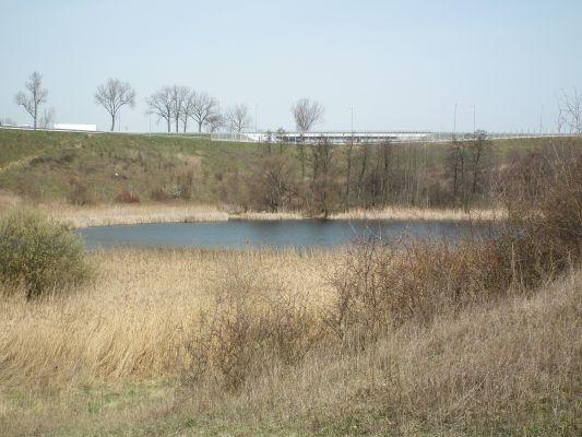 Koszyk Lake in Gniezno (2)