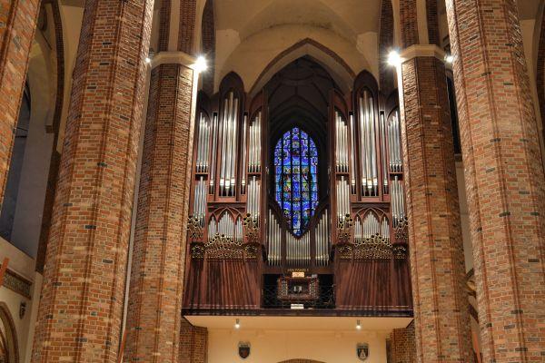 Szczecin katedra organy (1)