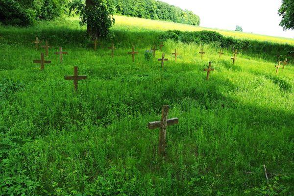 Cmentarz wojenny Gołoszyce