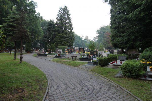 Alejka cmentarza Wszystkich Świętych w Pszczynie