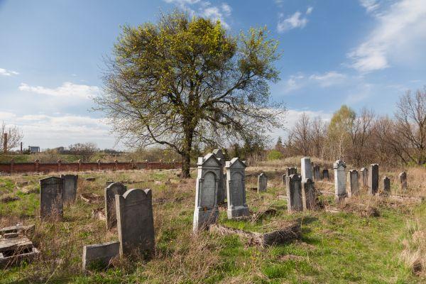 Koronowo cmentarz zydowski