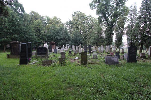 Cmentarz żydowski w Pszczynie - widok ogólny
