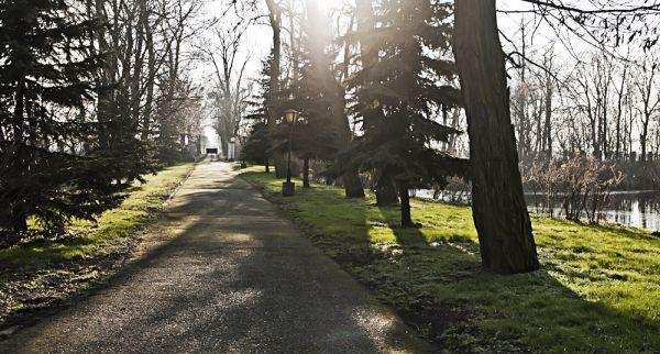 Brama wjazdowa Muzeum w Pilaszkowie