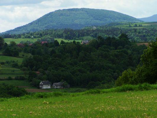 Kostrza - widok z Trzciany