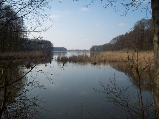 Jezioro Swiesz-widok od grobli 3
