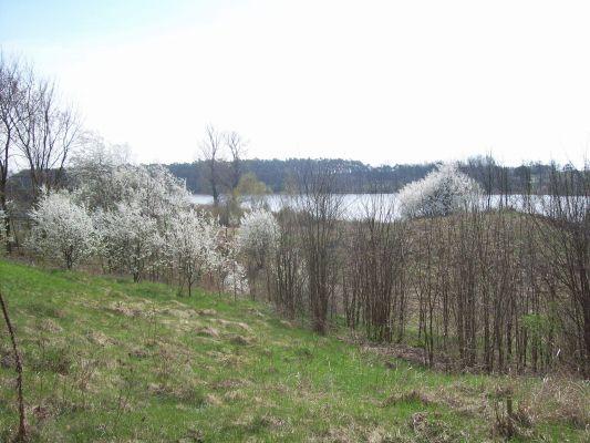 Swiesz PL - sight on lake Swiesz from palace side April 2012