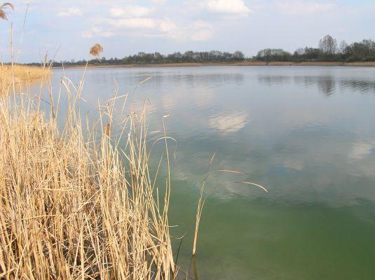 Jezioro Wilczyńskie k. wsi Świętne