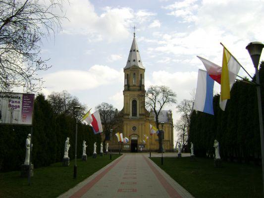 Wojciecha