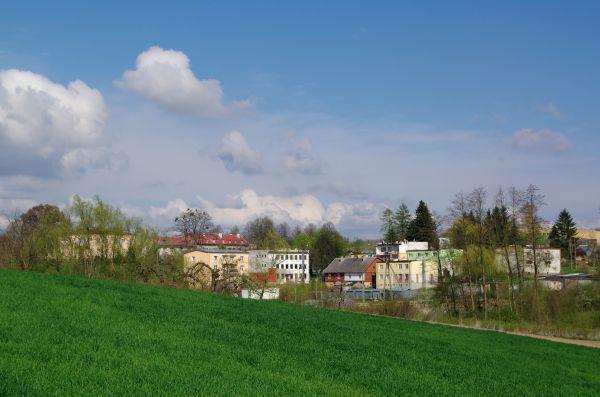 Lipowa pod Opatowem 20140420 1153
