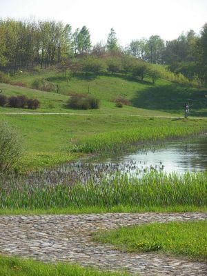 Bydgoszcz OB wiosną 4