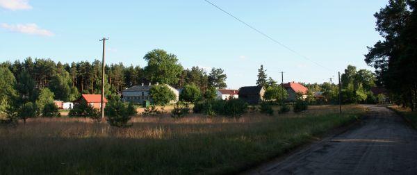 Okoniny fragment wsi 01.07.10 p