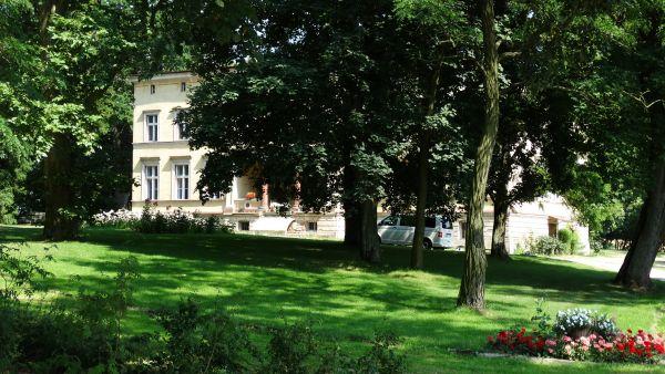 Park, poł. XIX Luszkówko (8)