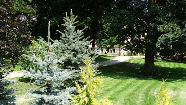 Park, poł. XIX Luszkówko (7)