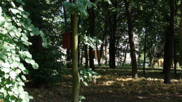 Park, poł. XIX Luszkówko (3)
