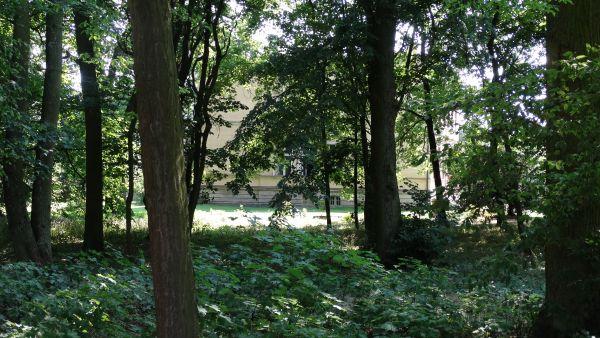 Park, poł. XIX Luszkówko (2)