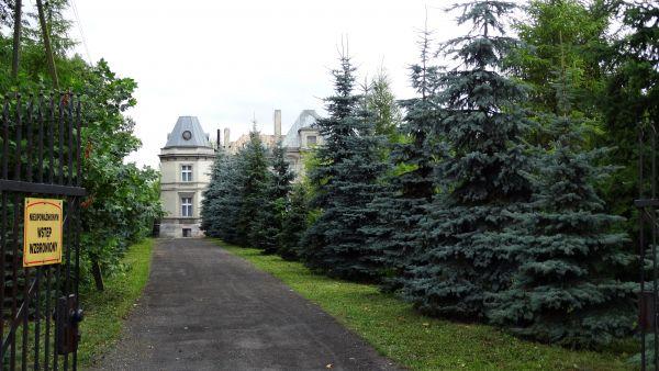 Pałac, 1876 Cerekwica park przy pałacu (4)