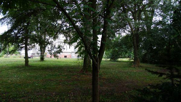 Pałac, 1876 Cerekwica park przy pałacu 17