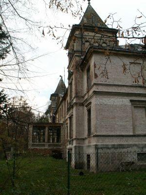 POL Czerwięcice pałac 13
