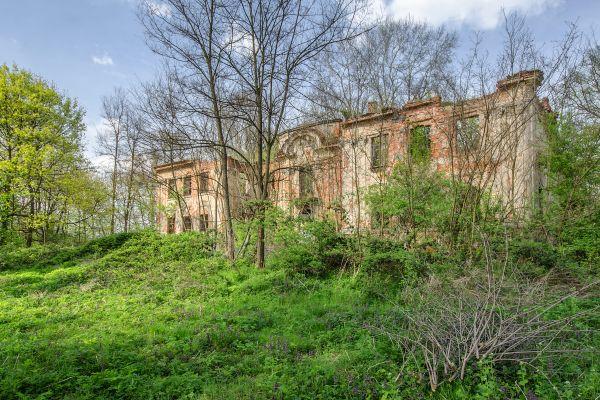 SM Dziesław pałac (9) ID 595779