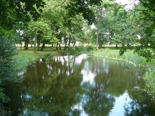 Urokliwy zakątek w Grocholińskim parku nf1 4