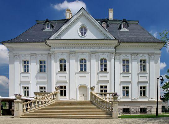 Pałac w Boryni 7