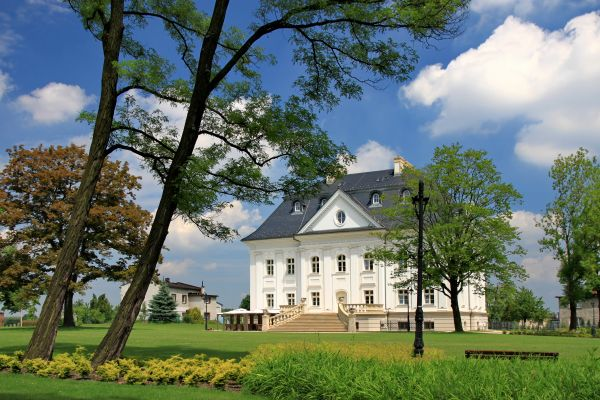 Pałac w Boryni 10