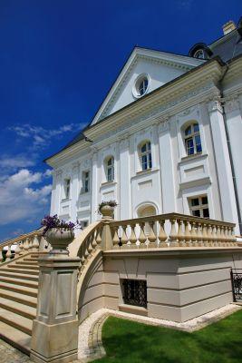 Pałac w Boryni 8