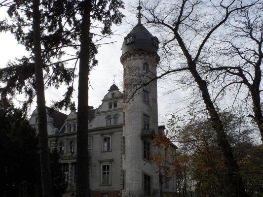 Pałac w Kruszewie widok od stront okrądłej baszty