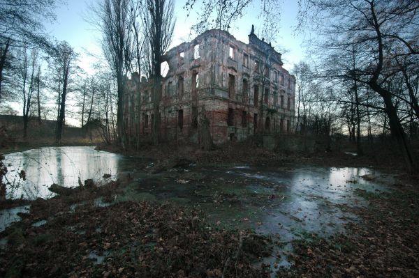 Pałac w Krzydłowicach 02