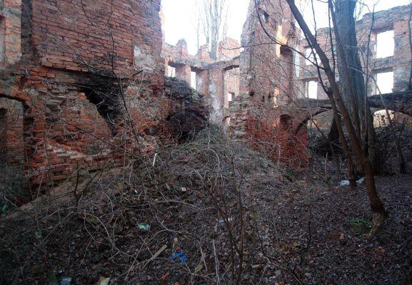 Pałac w Krzydłowicach 05