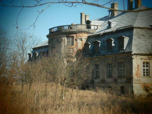 Ruiny pałacu Minkowice 2