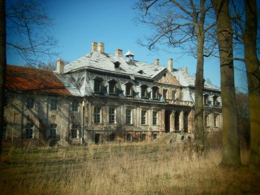 Ruiny pałacu Minkowice 4