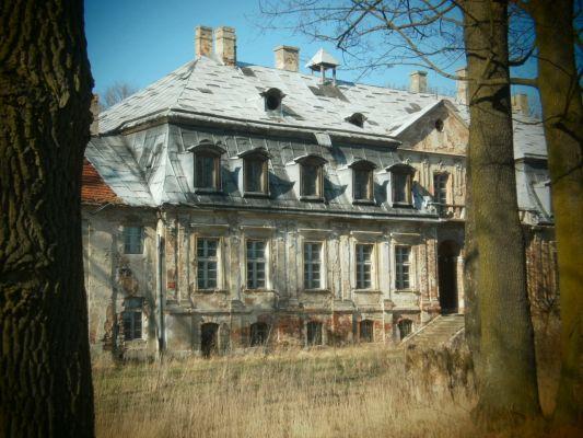 Ruiny pałacu Minkowice 1