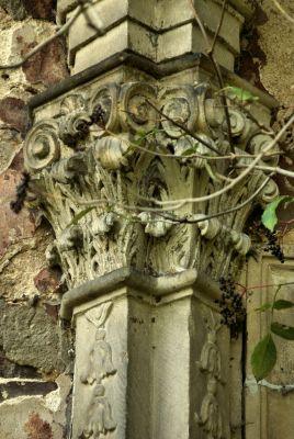 Parchów --Ruina pałacu (zetem) 07
