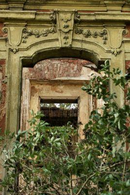 Parchów --Ruina pałacu (zetem) 11
