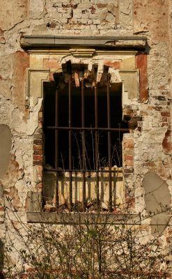 Parchów --Ruina pałacu (zetem) 14