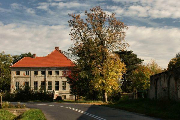 Sieroszowice -- Pałac (zetem)