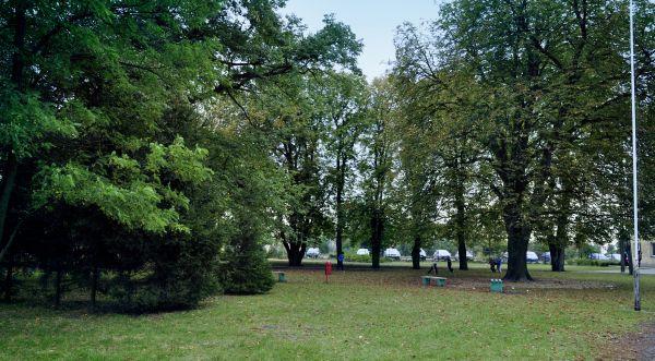 Zespół pałacowy Tuczno - park AW