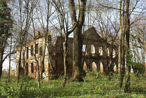 9963m Ruiny pałacu w Zaborowie. Foto Barbara Maliszewska