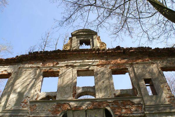 9964viki Ruiny pałacu w Zaborowie. Foto Barbara Maliszewska