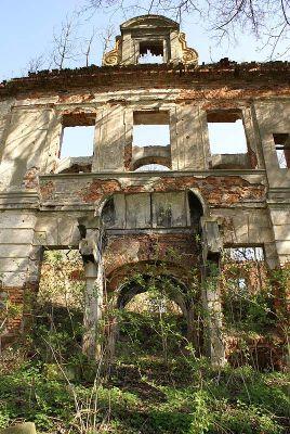 9965m Ruiny pałacu w Zaborowie. Foto Barbara Maliszewska