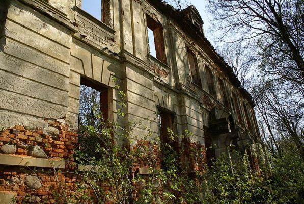 9969m Ruiny pałacu w Zaborowie. Foto Barbara Maliszewska